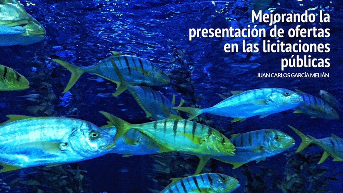Mejorando la presentación de ofertas | Melián Abogados
